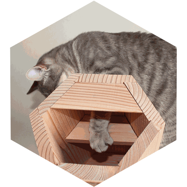 Descriptif Avibox symbiosphere (Balcon anti-chat)